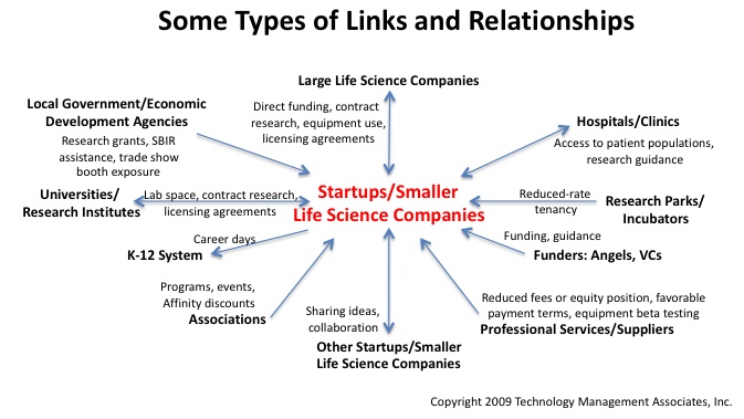 Biocluster players: links and relationships among startups and other players